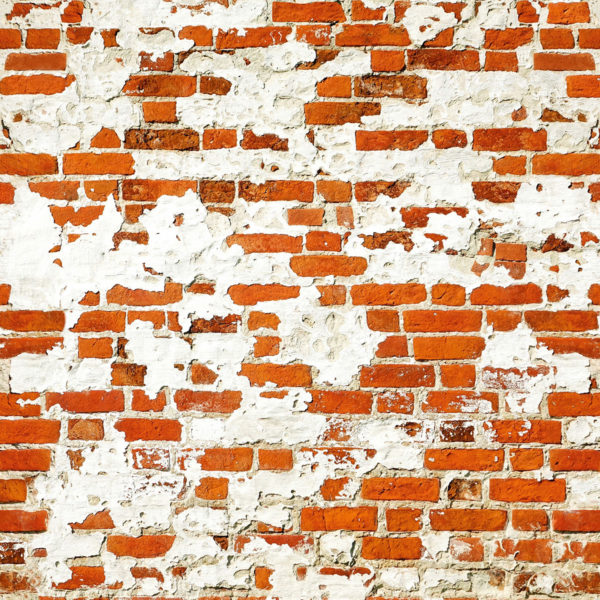 brick_wall_274.5x254cm_00