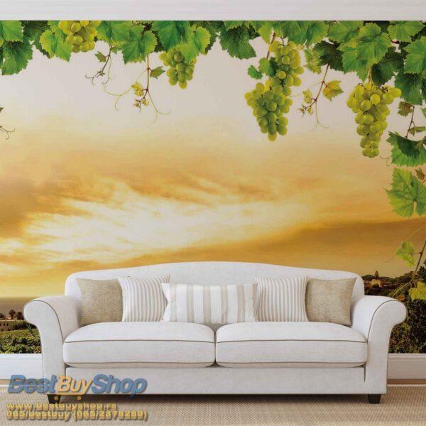 2330p8-1 jesen grozdje priroda zalazak sunca fototapeta foto tapeta 3d tapete fototapet