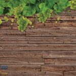 2335p8 grozdje daske priroda vino fototapeta foto tapeta 3d tapete fototapet