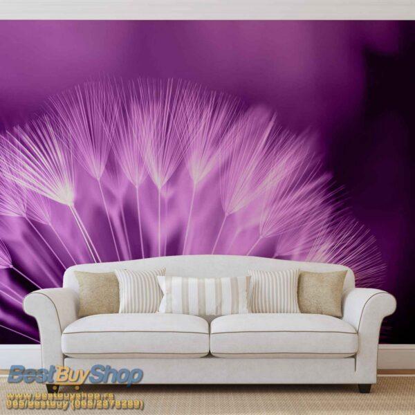 257P8-1 maslacak lila purple fototapeta foto tapeta 3d tapete fototapet