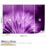 257P8-2 maslacak lila purple fototapeta foto tapeta 3d tapete fototapet