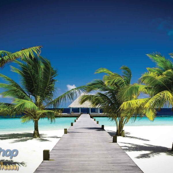 50225P4 tropical ocean journey