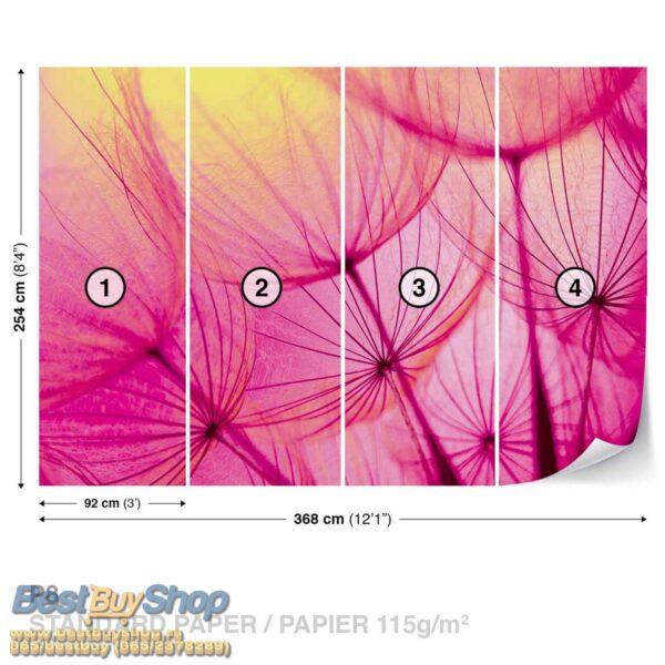 584P8-1 maslacak roze cvece fototapeta foto tapeta 3d tapete fototapet