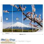 8-006P8-1 cvece planina sneg priroda fototapeta foto tapeta 3d tapete fototapet