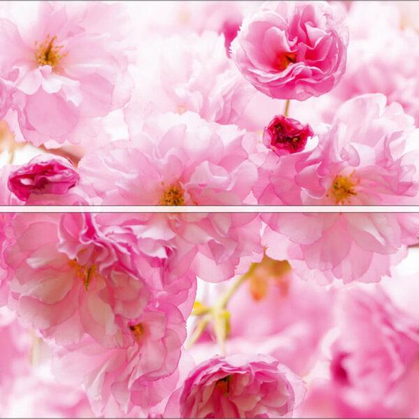 wm012p4-2 roza ruze roze cvece na zidu 3d fototapeta foto tapet tapeta zidni mural
